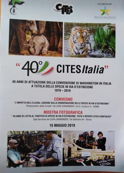 locandina-della-manifest.ne_