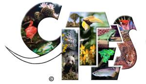 CITESlogo